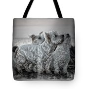 The 3 Amigos Tote Bag