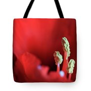 The Amaryllis Tote Bag by Tracy Hall