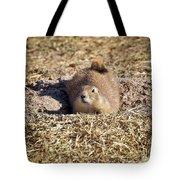 The Amazing Black-tailed Prairie Dog Tote Bag