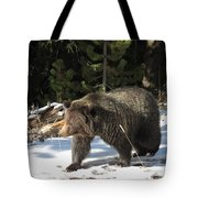 The American Grizzly Tote Bag