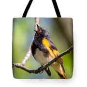 The American Redstart Tote Bag