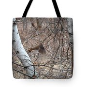 The American Woodcock In Take-off Flight Tote Bag