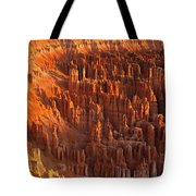 The Amphitheater Tote Bag