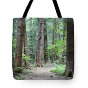 The Ancient Hemlock Forest Tote Bag