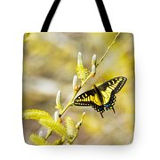 the Anise Swallowtail  feeding in the trees Tote Bag