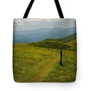 The Appalachian Trail Crossing Max Patch Tote Bag