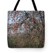 The Apple Tree Tote Bag by Danielle Allard