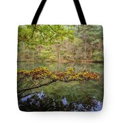 The Arsenic Lake Devon Great Consols Tote Bag