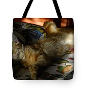 The  Art Of Relaxation Tote Bag