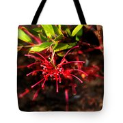 The Art Of Spider Flower Tote Bag