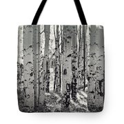 The Aspen Forest In Black And White  Tote Bag