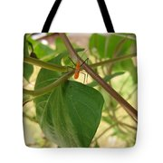 The Assassin Tote Bag