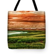 The Atlantic White Cedar Swamp Trail Tote Bag