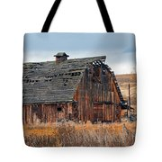 The Autumn Of Our Years Tote Bag