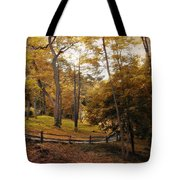 The Back Way Tote Bag