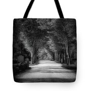 The Backroad Tote Bag