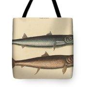 The Barracuda (esox Barracuda) Tote Bag