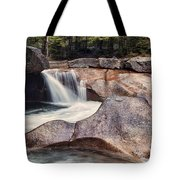The Basin Pano Tote Bag