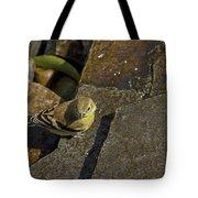 The Bath - American Goldfinch - Spinus Tristis Tote Bag