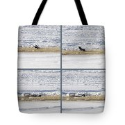 The Bath Of A Magpie Tote Bag