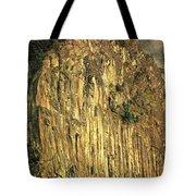The Beacon Rock Encounter Tote Bag