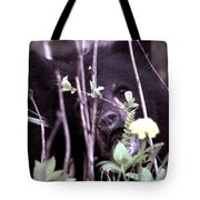 The Bearcub And The Dandelion Tote Bag