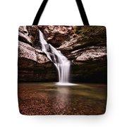 The Beautiful Cedar Falls Tote Bag