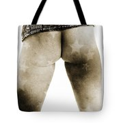 The Beautiful Female Nude Fine Art Prints Or Photographs  4244.0 Tote Bag