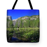 The Beautiful Nymph Lake With Reflection And Clear Water Tote Bag