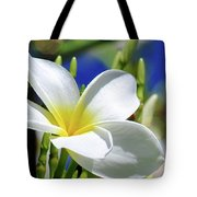 The Beautiful Plumeria  Tote Bag