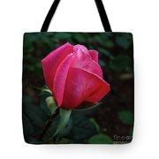 The Beautiful Rose Bud Tote Bag