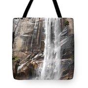 The Beautiful Venral Fall Tote Bag