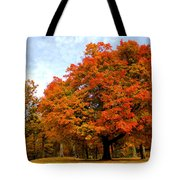 The Beauty Of Autumn  Tote Bag