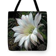 The Beauty Of Cactus Tote Bag