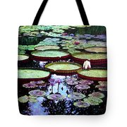 The Beauty Of Stillness Tote Bag