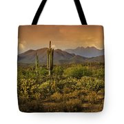 The Beauty Of The Sonoran Desert  Tote Bag