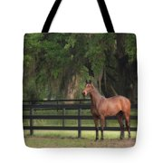 The Beauty Of The Thoroughbred Tote Bag