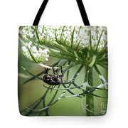 The Beetle Acrobat Tote Bag