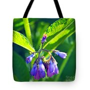 The Bells Of Ireland Tote Bag