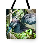 The Bends Tote Bag