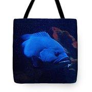 The Big Blue Tote Bag