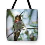 The Bird In The Foil Mask -- Anna's Hummingbird In Templeton, California Tote Bag