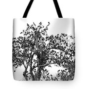 The Birds And The Tree Tote Bag