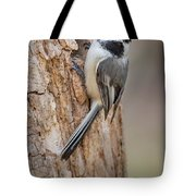 The Black Capped Chickadee Tote Bag
