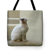 The Blond 5 Tote Bag