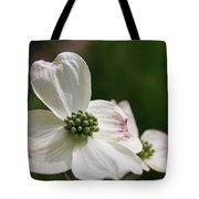 The Bloom Of Affection Tote Bag