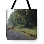The Blue Blazes Jump And Run Tote Bag