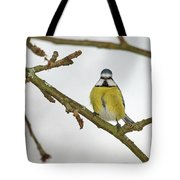 The Bold One. Eurasian Blue Tit Tote Bag