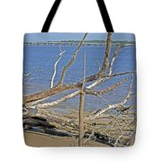 The Boneyard Tote Bag