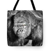 The Bouncer Gorilla Tote Bag by David Millenheft